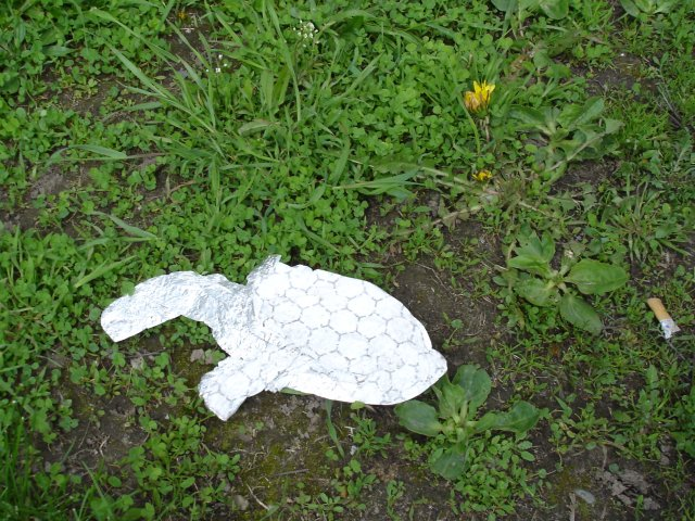 Snapping turtle, as seen as a paranoiac-critical image in a discarded gyro wrapper, Chester TTC