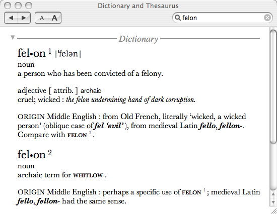 OS X Tiger&#39;s Dictionary