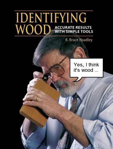 Identifying Wood book cover, doctored a bit