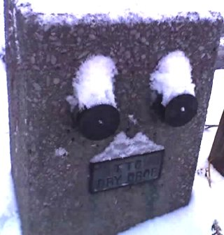 a snow covered hydrant looks surprised