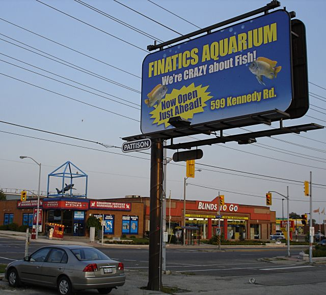 Finatics' sign, by Big Al's
