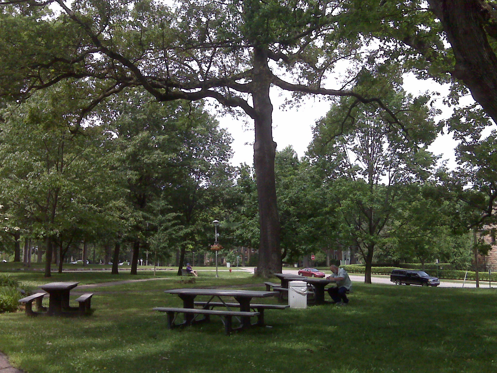 the quad at Olivet College