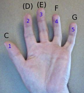 a hand, in the key of C
