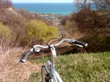 Bluffers Park from above, with bike