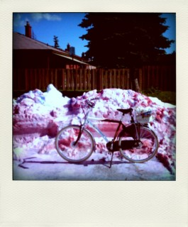 Pink Snow in June