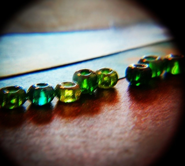 low-angle sunlit beads