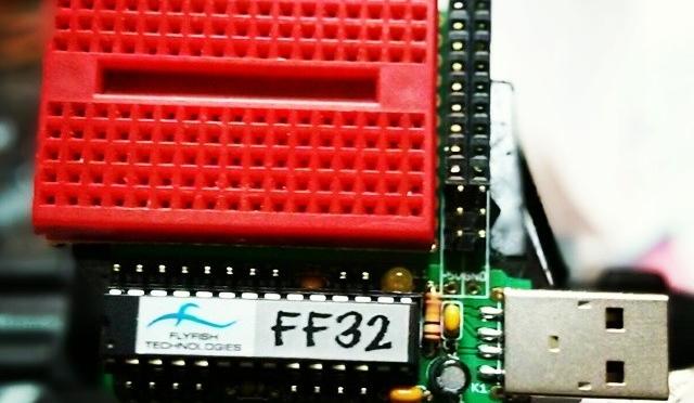 Flyfish FF32, a PIC-based USBeastie