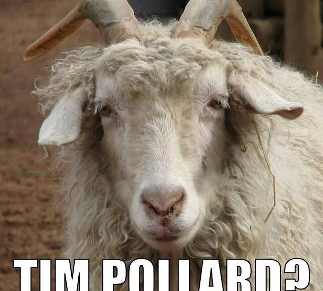 Tim Pollard?