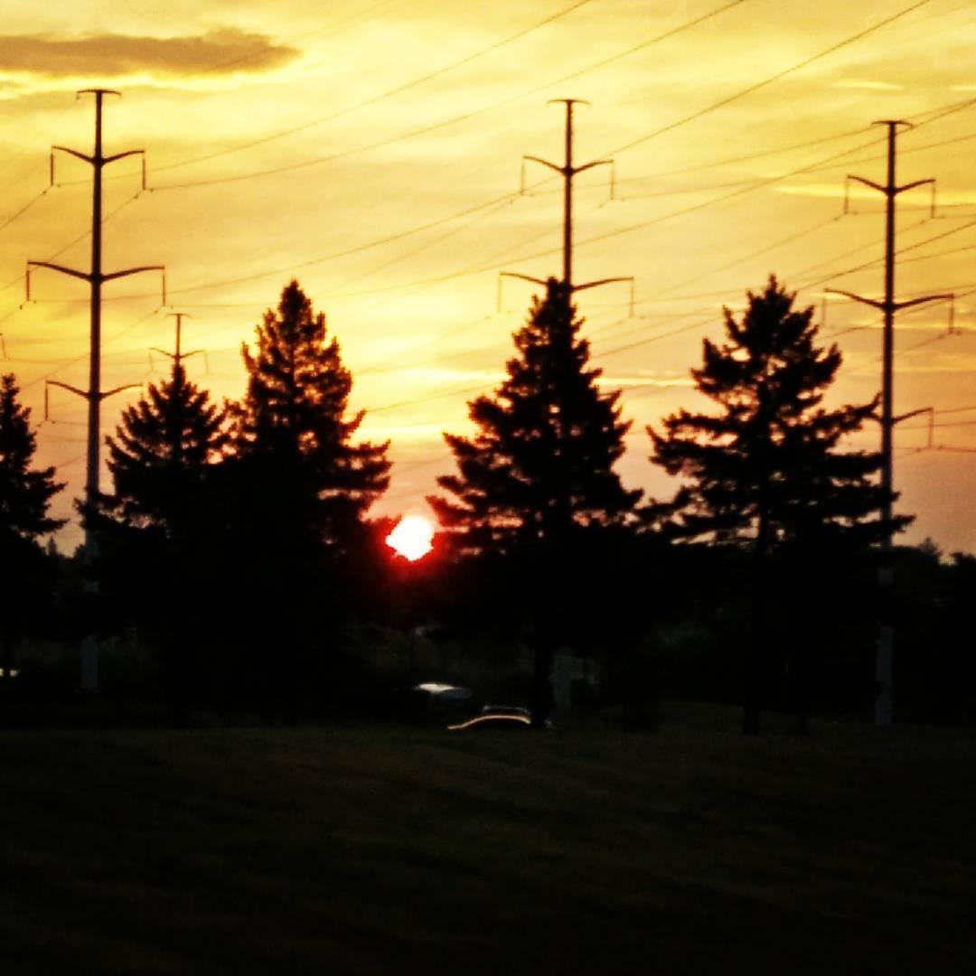 Sun rise to cricket chorus