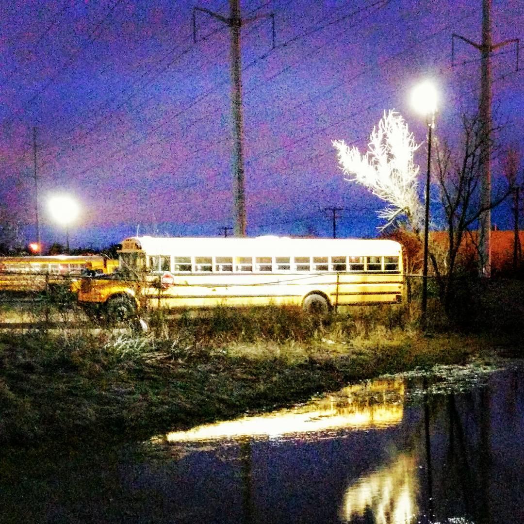 dawntime buslight