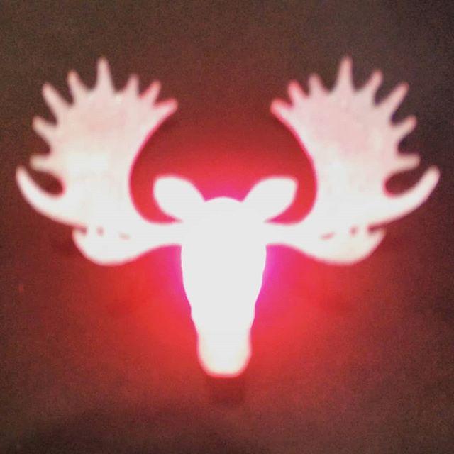 glowmoose
