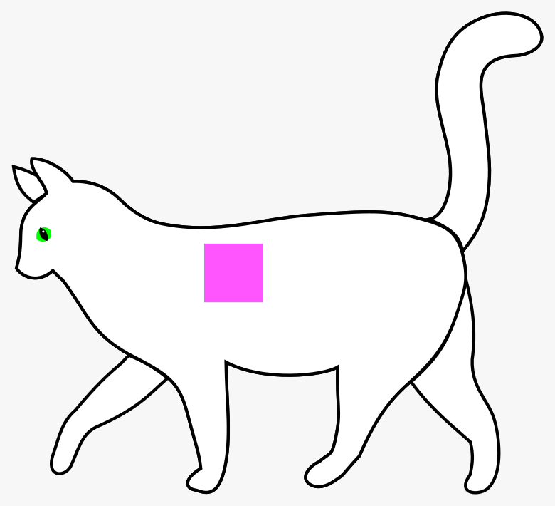 a line drawing of a white cat walking to the left with tail raised. A bright magenta square has been applied near front shoulder